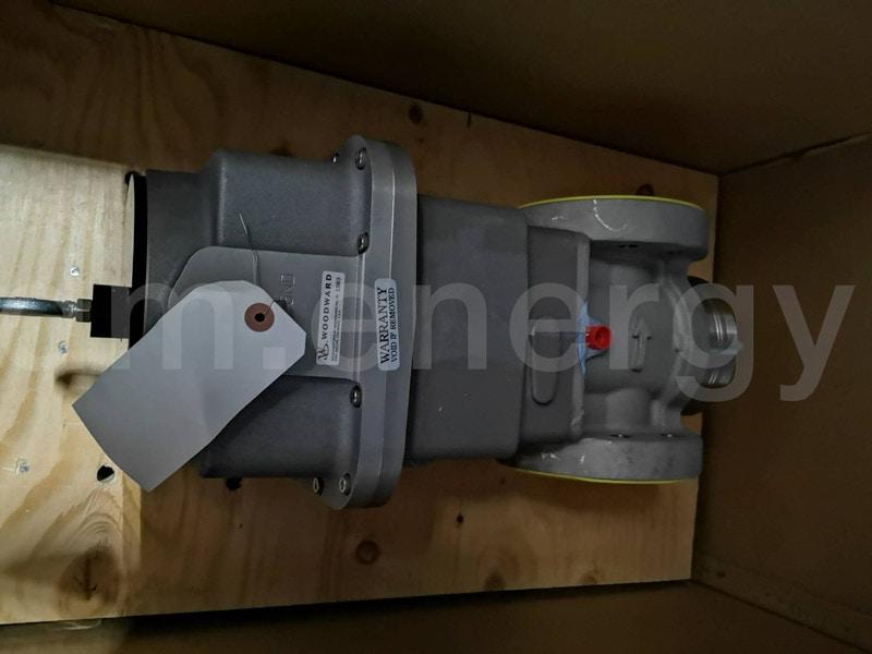 Заказать сервис и поставку газовых клапанов и клапанов жидкого топлива в России и СНГ от официального производителя.